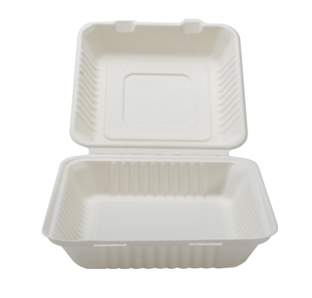"9"" X 9"" X 3.1"" HINGED CONTAINER - DEEP"